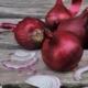 oignons-rouges-bio