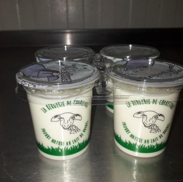 yaourts-brebis