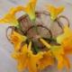 fleurs-courgettes-bio